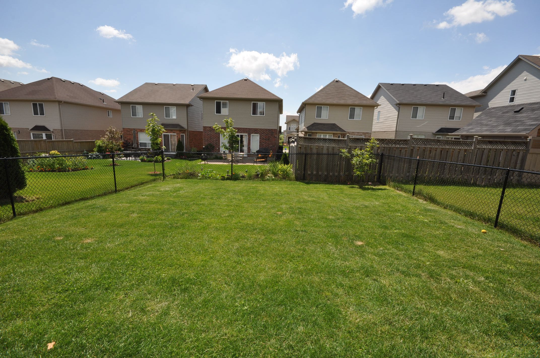 Large fenced backyard
