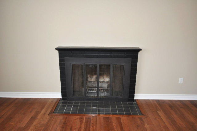 Wood Fuel Fireplace