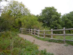 Enjoy the trails through Westminister Ponds