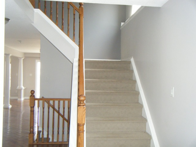 Carpeted Stairs leading to 2nd Floor