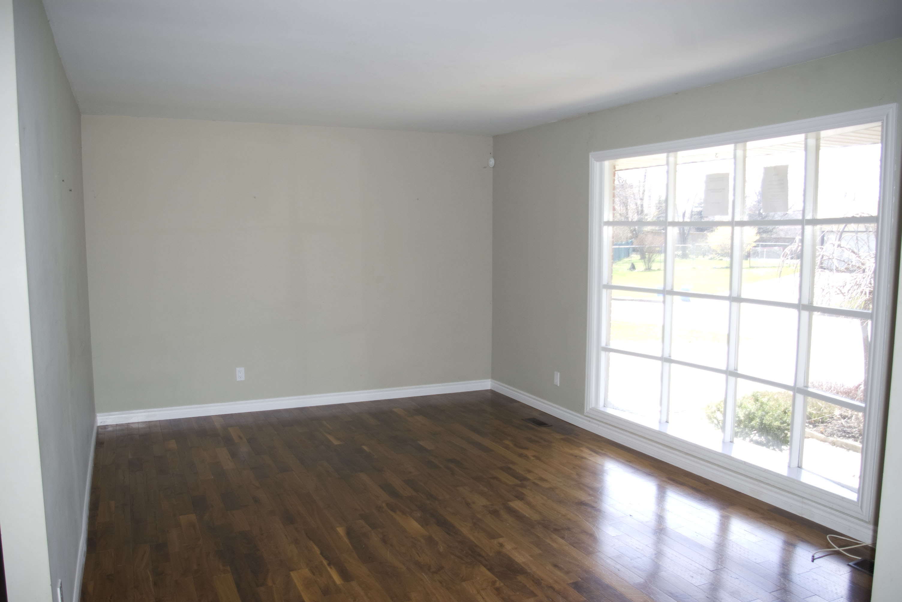 Gleaming Hardwood in Living Room