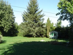 Large private fenced lot,aproximately a half an acre
