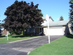 Double drive and oversized double garage with newer door