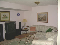 Living room in lower level