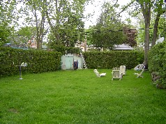 Backyard is large enough for the children and your family pet to play