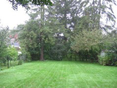 Large private yard with lots of gardens