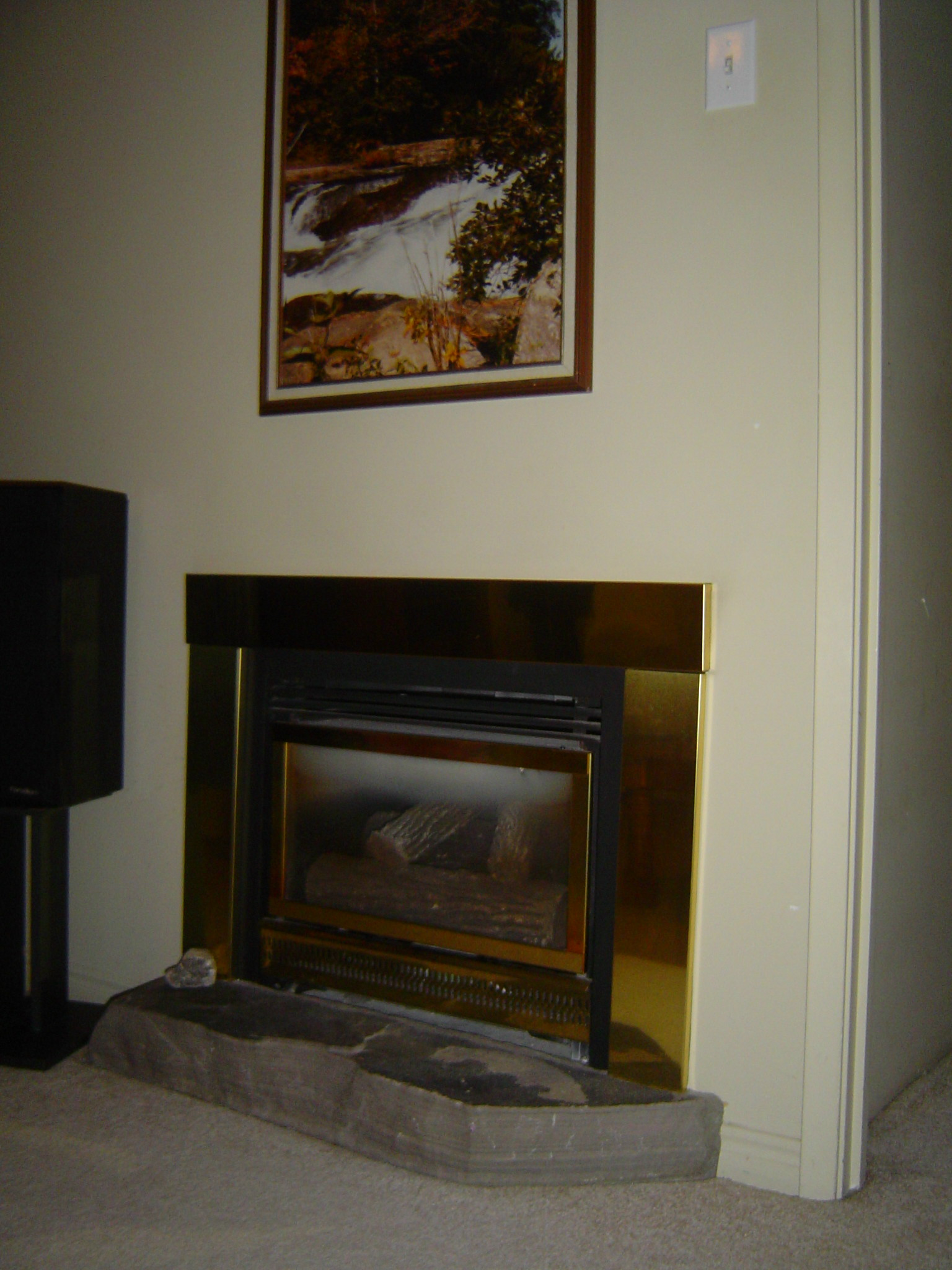 Snuggle up with a good book in front of the gas fireplace